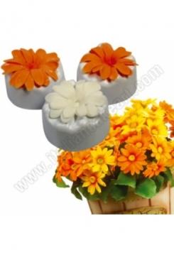 Blumenformer Daisy 4er Set