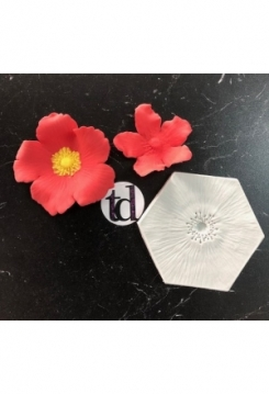Blume fein 9X10cm