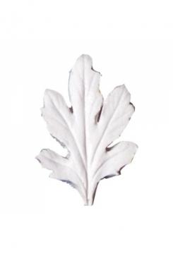 Chrysanthemum 6,5cm